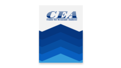 CEA NEWSLETTER 2020